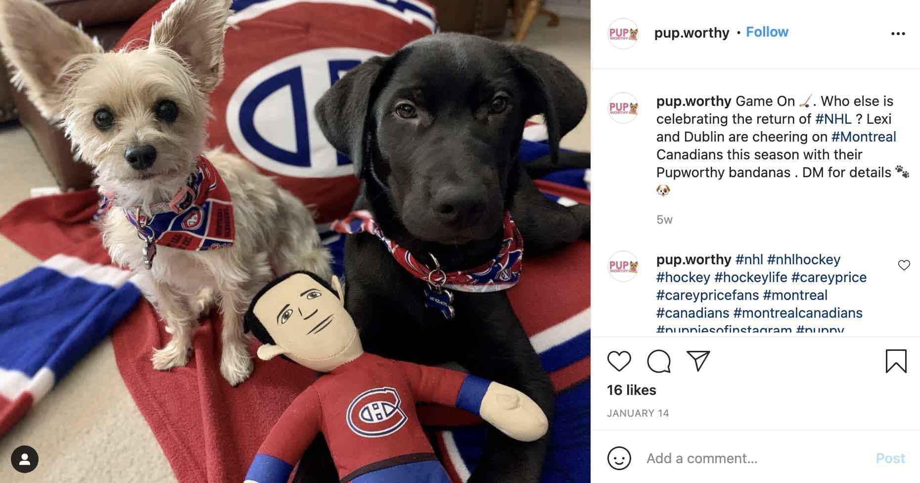 Pup Worthy Instagram post