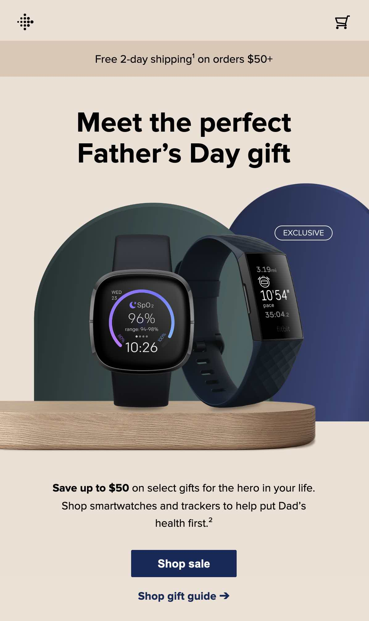 Fitbit Fathers Day Mail