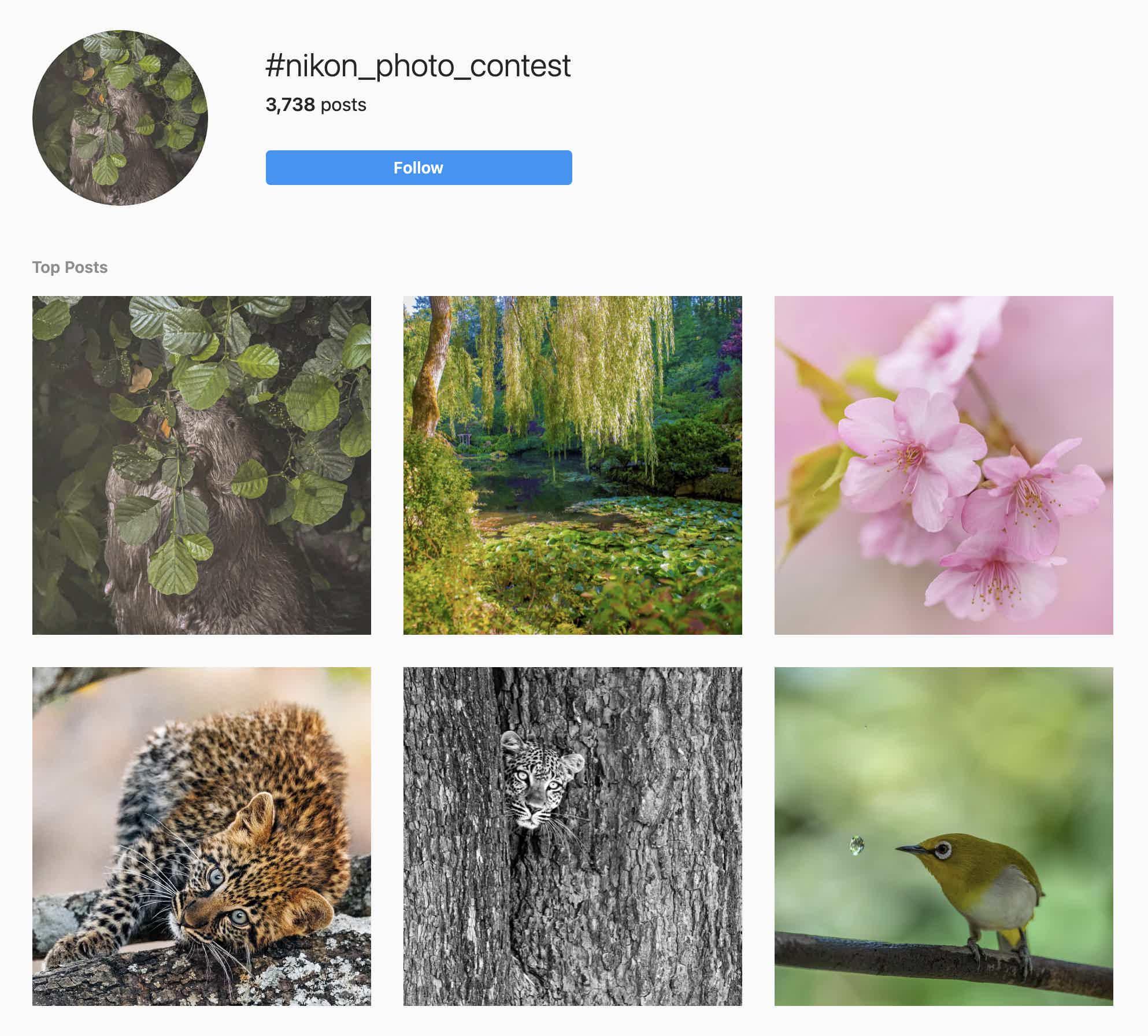 Nikon Photo Contest Hashtag Instagram